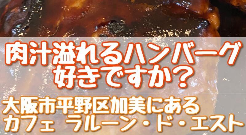 大阪市平野区にあるカフェ「ラルーン・ド・エスト」さんのWハンバーグのアイキャッチ